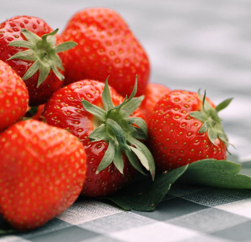 Hofmarkt Zapf Kandel Erdbeeren
